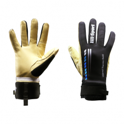 Legend Thermo Gold blue