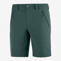 Wayfarer LT Short green...